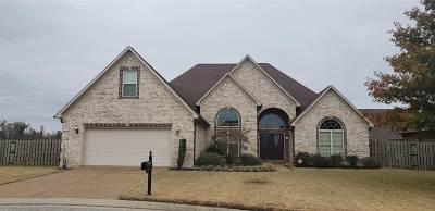 Jackon, Jackson, Jackson Tn, Jakcson Single Family Home For Sale: 48 Joseph Cove
