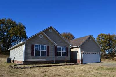 Dyer County Single Family Home For Sale: 917 Granite