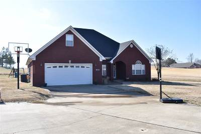 Dyersburg Single Family Home For Sale: 1747 Putter Ln