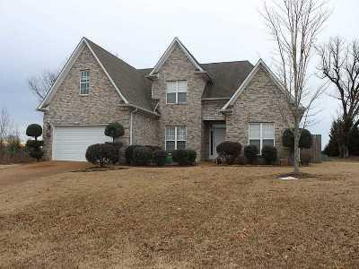 Jackon, Jackson, Jackson Tn, Jakcson Single Family Home For Sale: 72 Gatewick