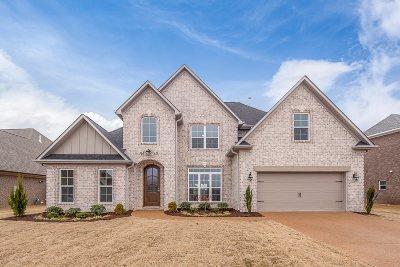 Jackon, Jackson, Jackson Tn, Jakcson Single Family Home For Sale: 149 Abraham
