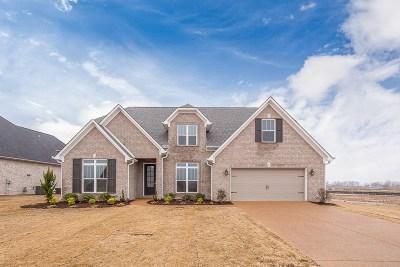 Jackon, Jackson, Jackson Tn, Jakcson Single Family Home For Sale: 155 Abraham