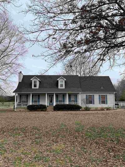 Jackon, Jackson, Jackson Tn, Jakcson Single Family Home For Sale: 189 Doak Mason