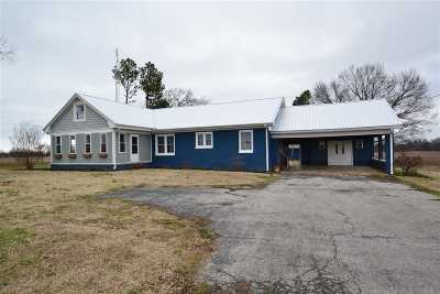 Trenton Single Family Home For Sale: 840 Dyersburg Hwy
