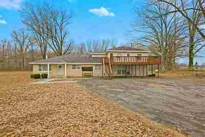 Haywood County Single Family Home For Sale: 15332 W Us 70