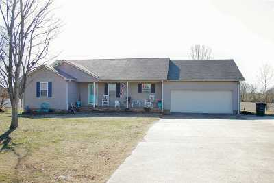 Dyer County Single Family Home For Sale: 2369 Lanes Ferry Road