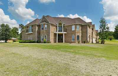 Henderson County Single Family Home For Sale: 47 Switch Cove