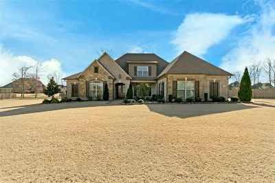 Jackon, Jackson, Jackson Tn, Jakcson Single Family Home For Sale: 36 Lake Pointe