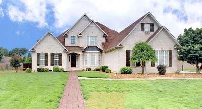 Jackon, Jackson, Jackson Tn, Jakcson Single Family Home For Sale: 95 Greendale Drive