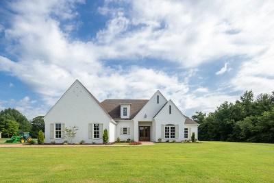 Jackon, Jackson, Jackson Tn, Jakcson Single Family Home For Sale: 935 Ashport