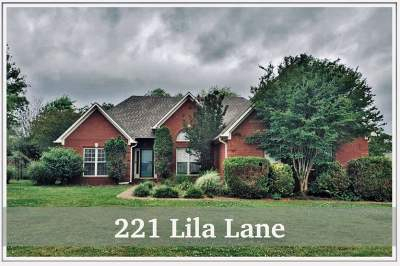 Medina Single Family Home For Sale: 221 Lila