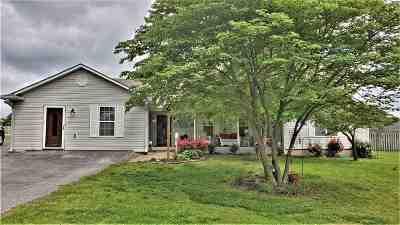 Medina Single Family Home For Sale: 256 Blackmon
