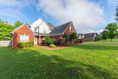 Medina Single Family Home For Sale: 137 Dana
