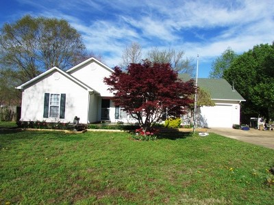 Dyersburg Single Family Home For Sale: 1043 Sir James