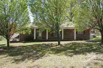 Dyersburg Single Family Home For Sale: 5289 E Highway 104