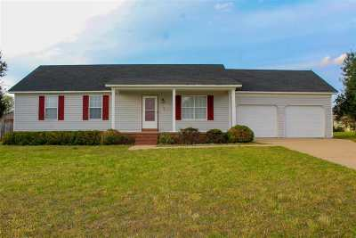 Haywood County Single Family Home For Sale: 156 Country