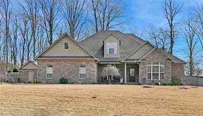 Jackon, Jackson, Jackson Tn, Jakcson Single Family Home For Sale: 114 Broadmeadow