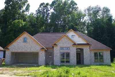 Jackon, Jackson, Jackson Tn, Jakcson Single Family Home For Sale: 357 Copper Creek