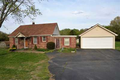 Weakley County Single Family Home For Sale: 12276 Hwy 45