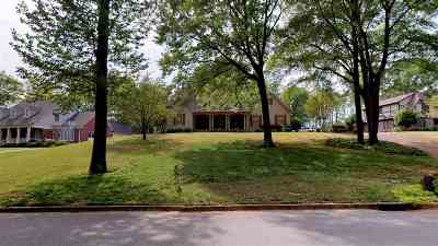 Dyersburg Single Family Home For Sale: 1039 Valley Road
