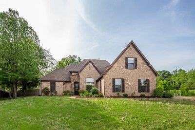 Fayette County Single Family Home For Sale: 105 Riverdale