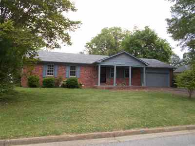 Gibson County Single Family Home For Sale: 3421 Clinton