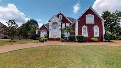 Jackon, Jackson, Jackson Tn, Jakcson Single Family Home For Sale: 123 Emerald Lake Drive