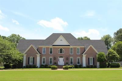 Jackon, Jackson, Jackson Tn, Jakcson Single Family Home For Sale: 58 Stonehenge