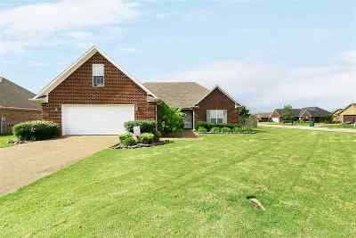 Medina Single Family Home For Sale: 494 Summit Dr