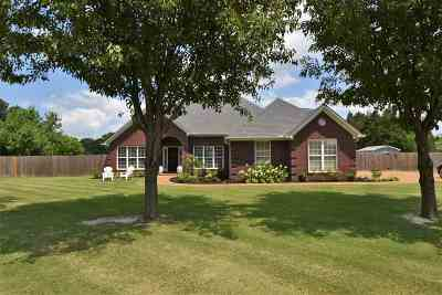Jackon, Jackson, Jackson Tn, Jakcson Single Family Home For Sale: 34 Dreamland