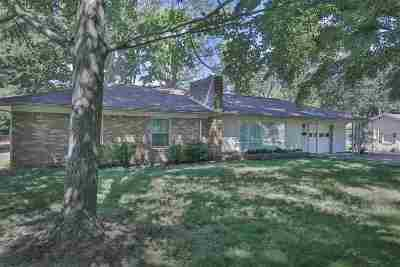 Weakley County Single Family Home For Auction: 219 Laura