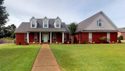Jackon, Jackson, Jackson Tn, Jakcson Single Family Home For Sale: 55 Greendale Dr