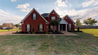 Gibson County Single Family Home For Sale: 691 Blackmon St