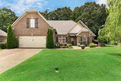 Jackon, Jackson, Jackson Tn, Jakcson Single Family Home For Sale: 333 Copper Creek Dr