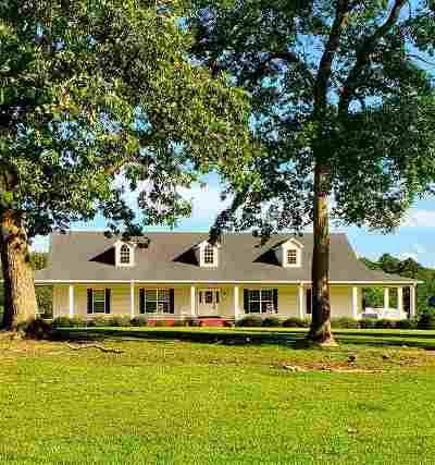 McNairy County Single Family Home For Sale: 2571 Hamburg Road