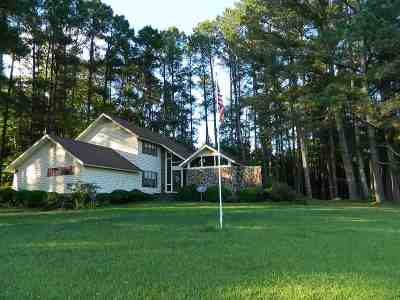 McNairy County Single Family Home For Sale: 4764 Highway 142