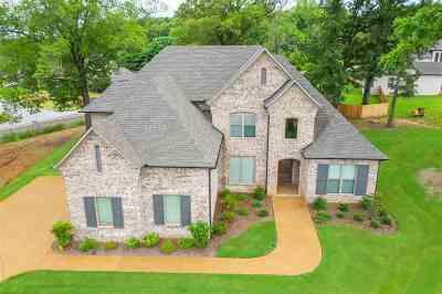 Jackon, Jackson, Jackson Tn, Jakcson Single Family Home For Sale: 17 Waterfront