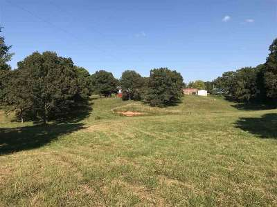 Carroll County Single Family Home For Sale: 335 Pleasant Hill