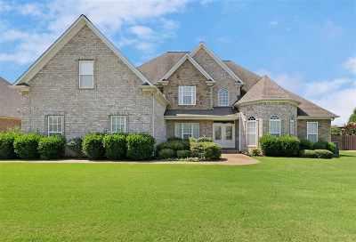 Jackon, Jackson, Jackson Tn, Jakcson Single Family Home For Sale: 18 Moss Branch