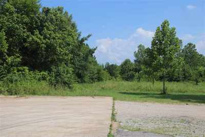 Commercial Lots & Land For Sale: Church Ave South