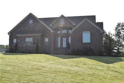 Chester County Single Family Home For Sale: 175 Ridgewood