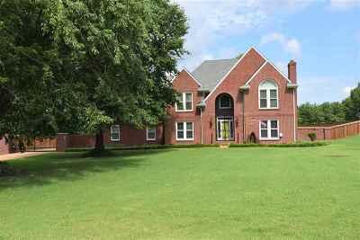 Jackon, Jackson, Jackson Tn, Jakcson Single Family Home For Sale: 41 Blue Grass