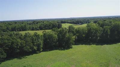 Dyersburg Residential Lots & Land For Sale: Lot 1 McCullough Chapel Rd