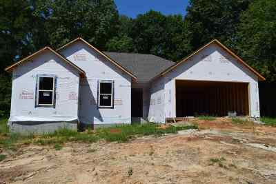 Chester County Single Family Home For Sale: 1975 N Pisgah Rd