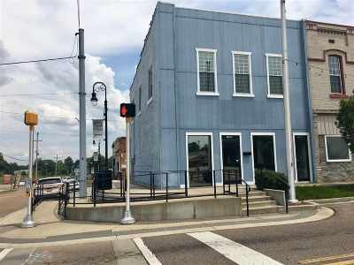 Commercial For Sale: 1042 S Main