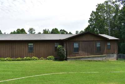 Hardeman County Single Family Home For Sale: 30 Big Springs