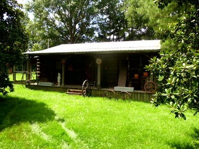 Weakley County Single Family Home For Sale: 476 Carney Rd.