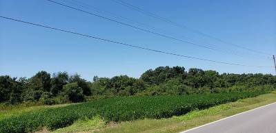 Milan TN Farm For Sale: $125,000