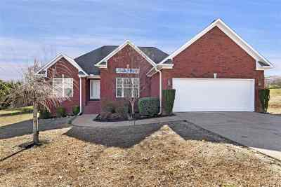 Chester County Single Family Home For Sale: 145 Dlynn Cove