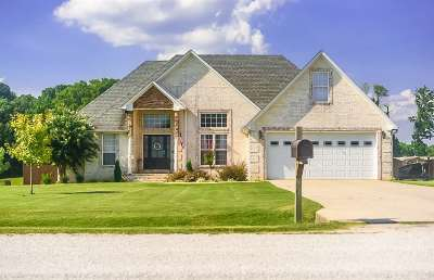 Chester County Single Family Home For Sale: 65 Mary Kate